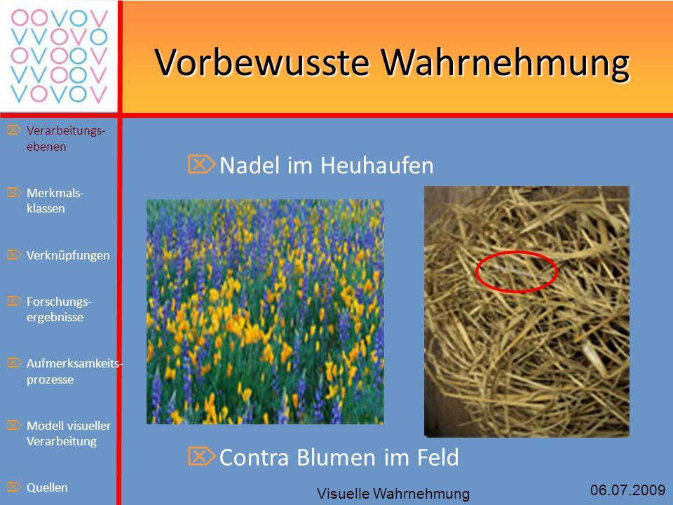 06.07.2009 Visuelle Wahrnehmung Vorbewusste Wahrnehmung  Nadel im Heuhaufen  Contra Blumen im Feld  Verarbeitungs- ebenen  Merkmals- klassen  Ver