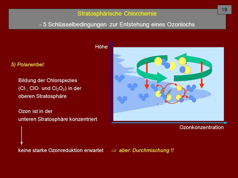 Stratosphärische Chlorchemie - 5 Schlüsselbedingungen zur Entstehung eines Ozonlochs 5) Polarwirbel: Bildung der Chlorspezies (Cl·, ClO· und Cl 2 O 2 ) in der oberen Stratosphäre Ozon ist in der unteren Stratosphäre konzentriert 19 Höhe Ozonkonzentration keine starke Ozonreduktion erwartet  aber: Durchmischung !!