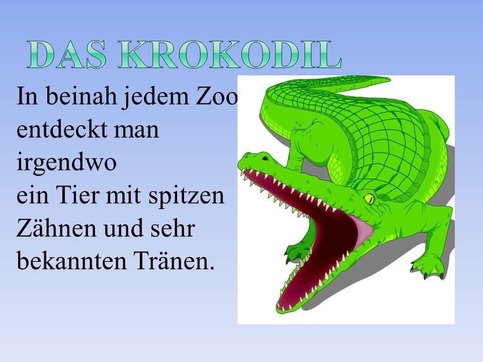 In beinah jedem Zoo entdeckt man irgendwo ein Tier mit spitzen Zähnen und sehr bekannten Tränen.