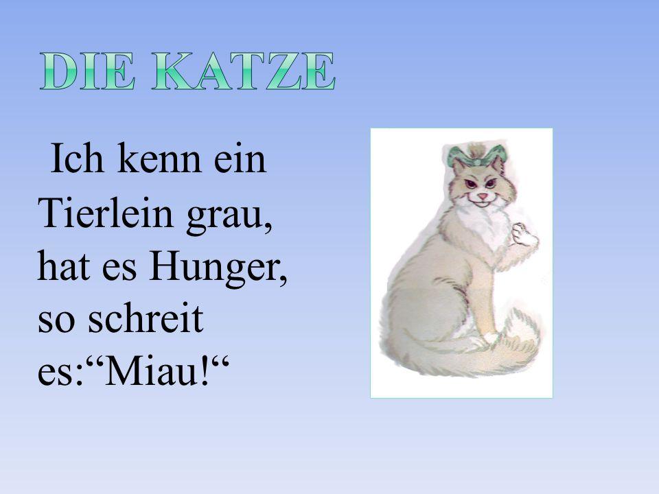 """Ich kenn ein Tierlein grau, hat es Hunger, so schreit es:""""Miau!"""""""