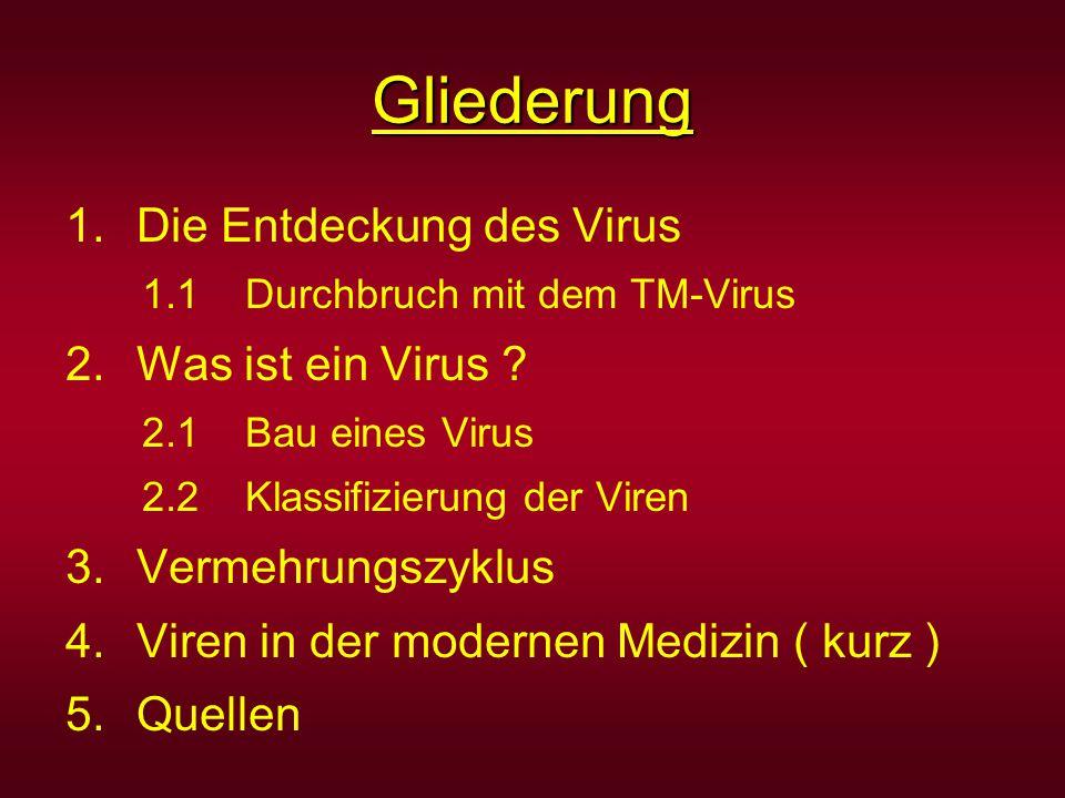 Gliederung 1.Die Entdeckung des Virus 1.1 Durchbruch mit dem TM-Virus 2.Was ist ein Virus ? 2.1 Bau eines Virus 2.2 Klassifizierung der Viren 3.Vermeh