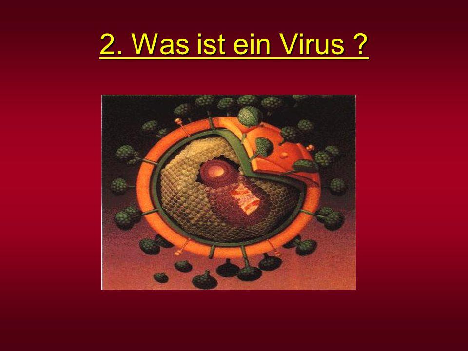 2. Was ist ein Virus ?