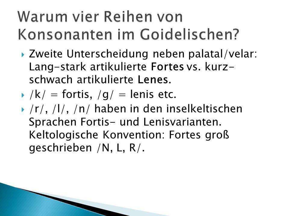  Zweite Unterscheidung neben palatal/velar: Lang-stark artikulierte Fortes vs. kurz- schwach artikulierte Lenes.  /k/ = fortis, /g/ = lenis etc.  /