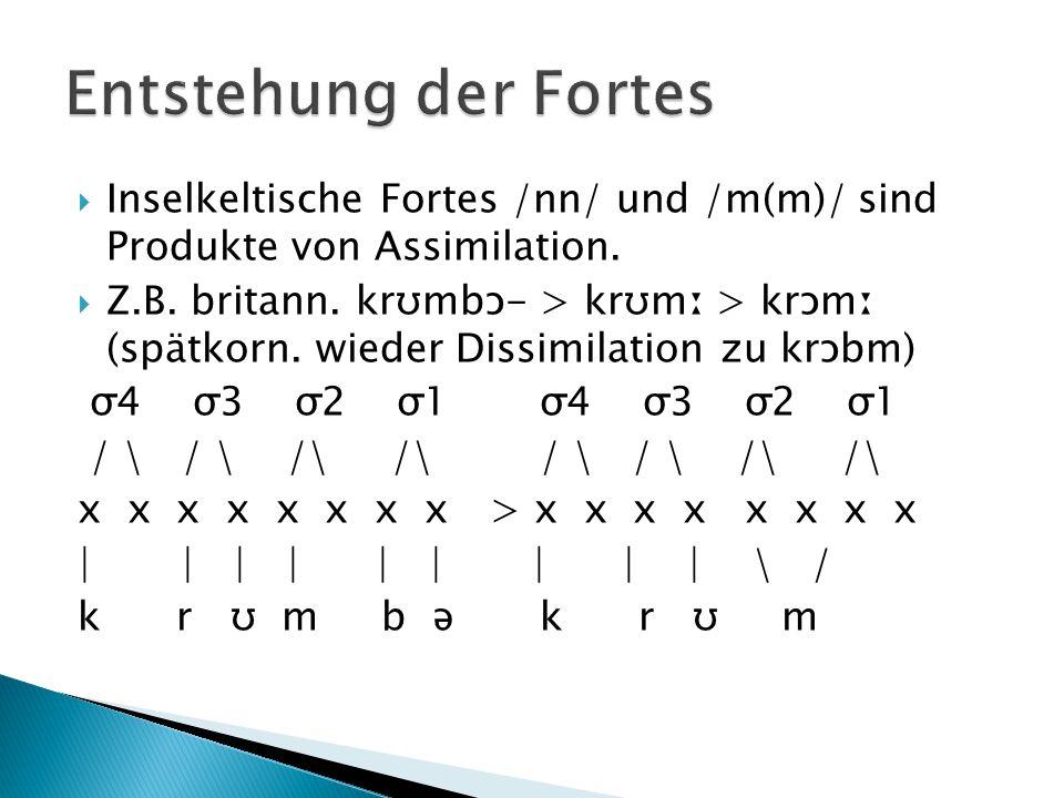  Inselkeltische Fortes /nn/ und /m(m)/ sind Produkte von Assimilation.  Z.B. britann. krʊmbɔ- > krʊmː > krɔmː (spätkorn. wieder Dissimilation zu krɔ
