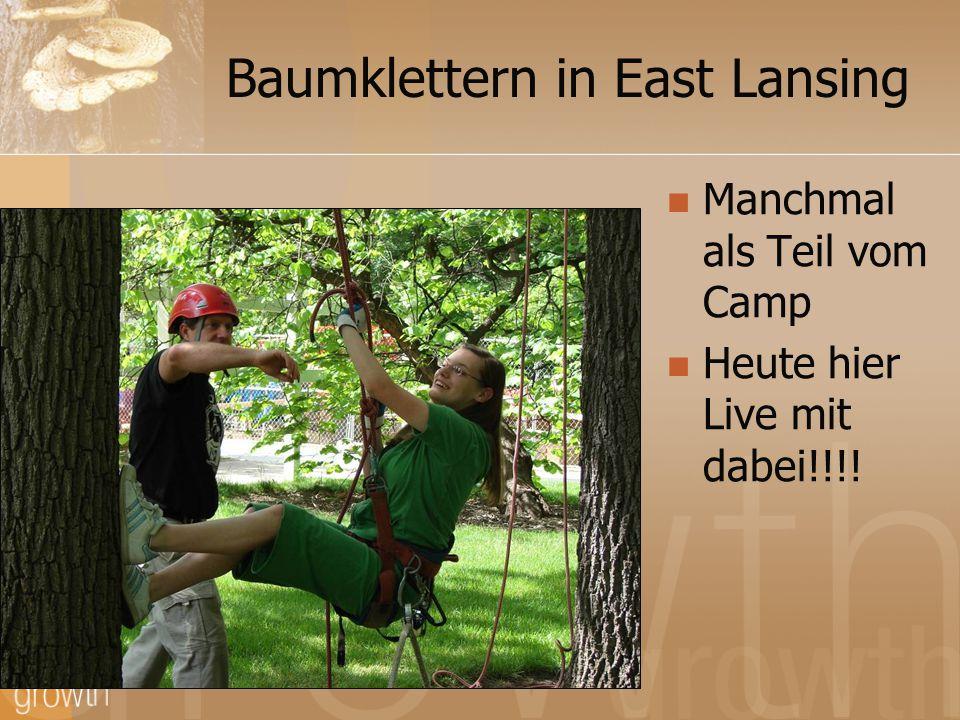 Baumklettern in East Lansing Manchmal als Teil vom Camp Heute hier Live mit dabei!!!!