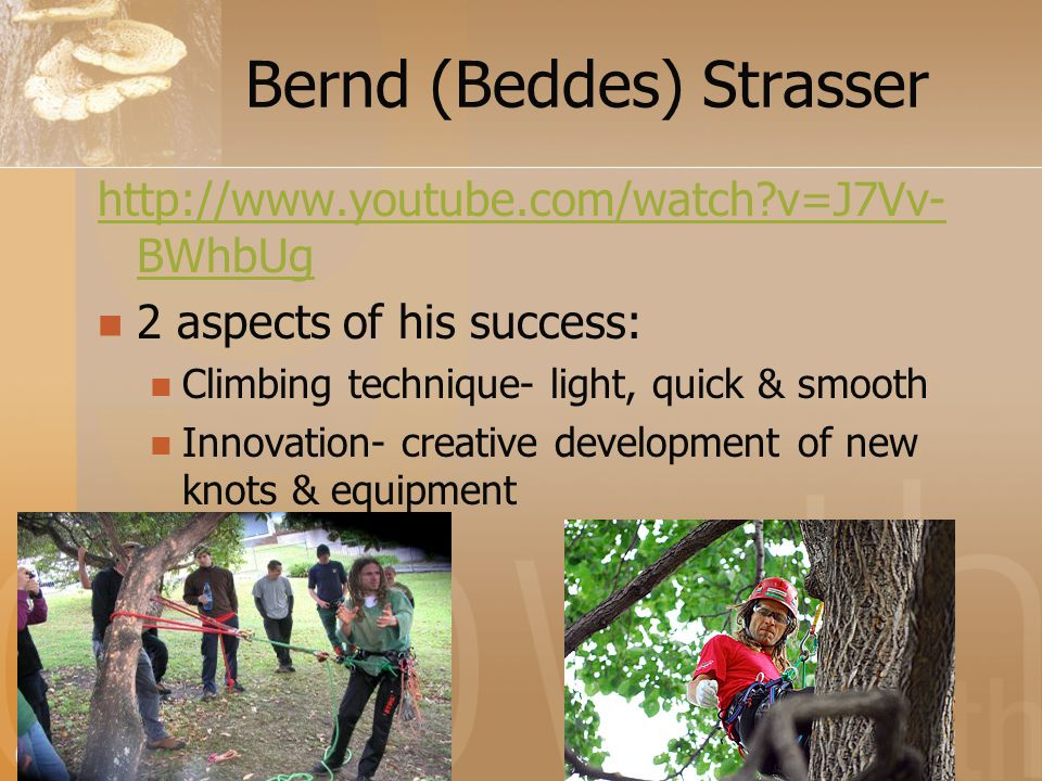 Bernd (Beddes) Strasser http://www.youtube.com/watch v=J7Vv- BWhbUg 2 aspects of his success: Climbing technique- light, quick & smooth Innovation- creative development of new knots & equipment