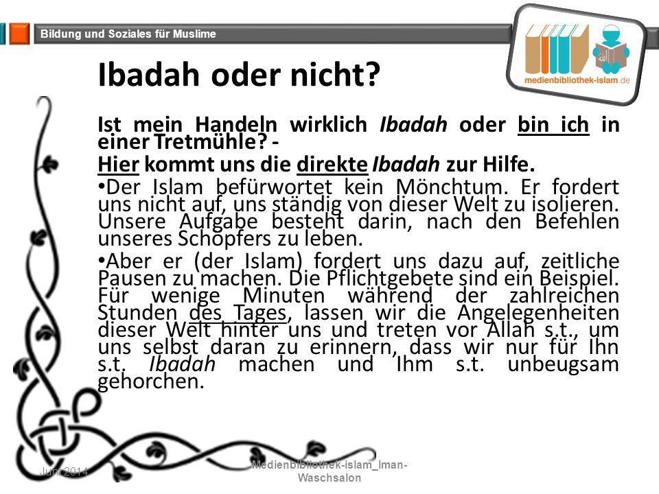 Bildung und Soziales für Muslime Ibadah oder nicht? Ist mein Handeln wirklich Ibadah oder bin ich in einer Tretmühle? - Hier kommt uns die direkte Iba