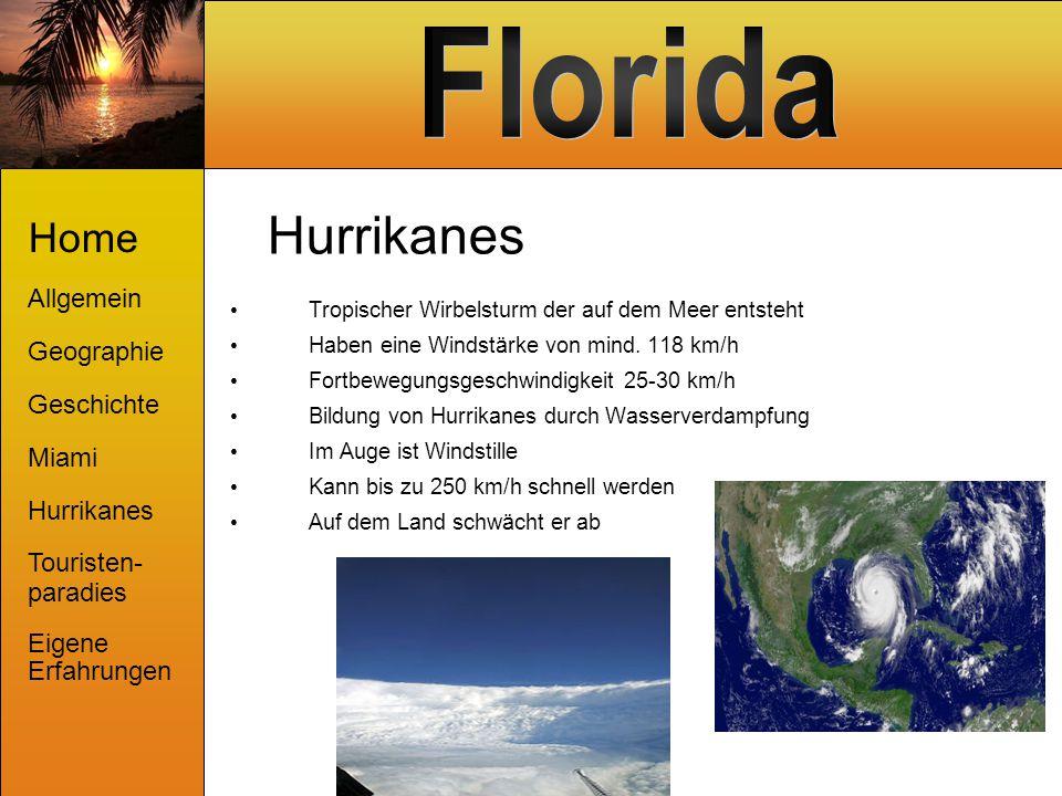 Hurrikanes Tropischer Wirbelsturm der auf dem Meer entsteht Haben eine Windstärke von mind. 118 km/h Fortbewegungsgeschwindigkeit 25-30 km/h Bildung v