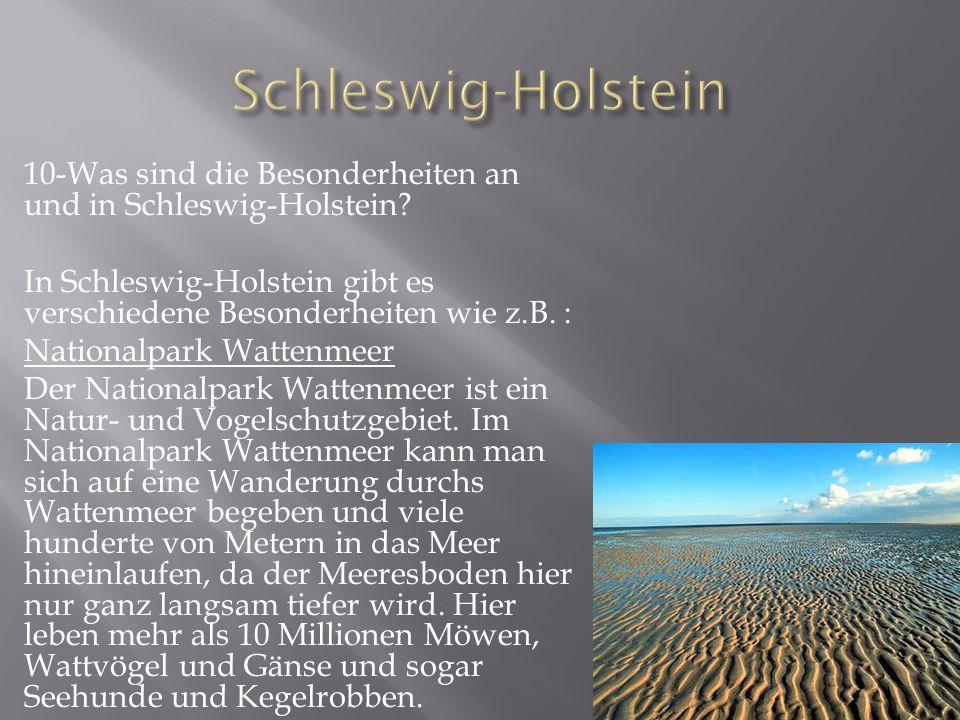 10-Was sind die Besonderheiten an und in Schleswig-Holstein.