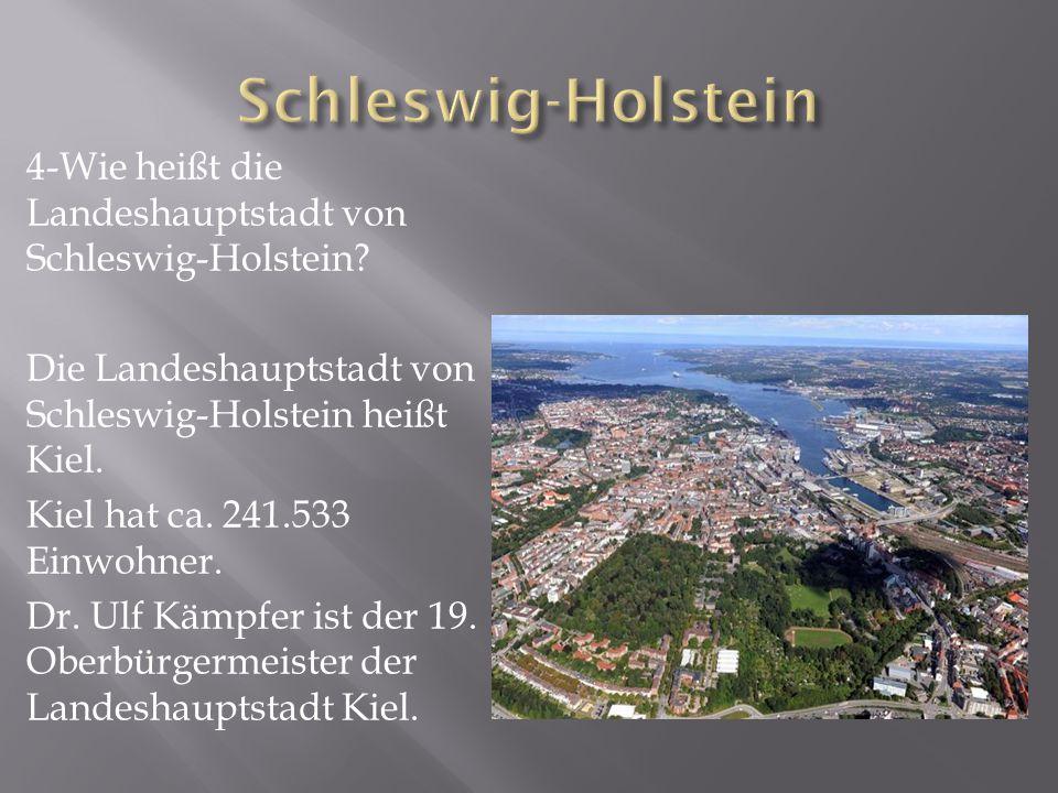 5-Welche bekannten Städte gibt es in Schleswig- Holstein.