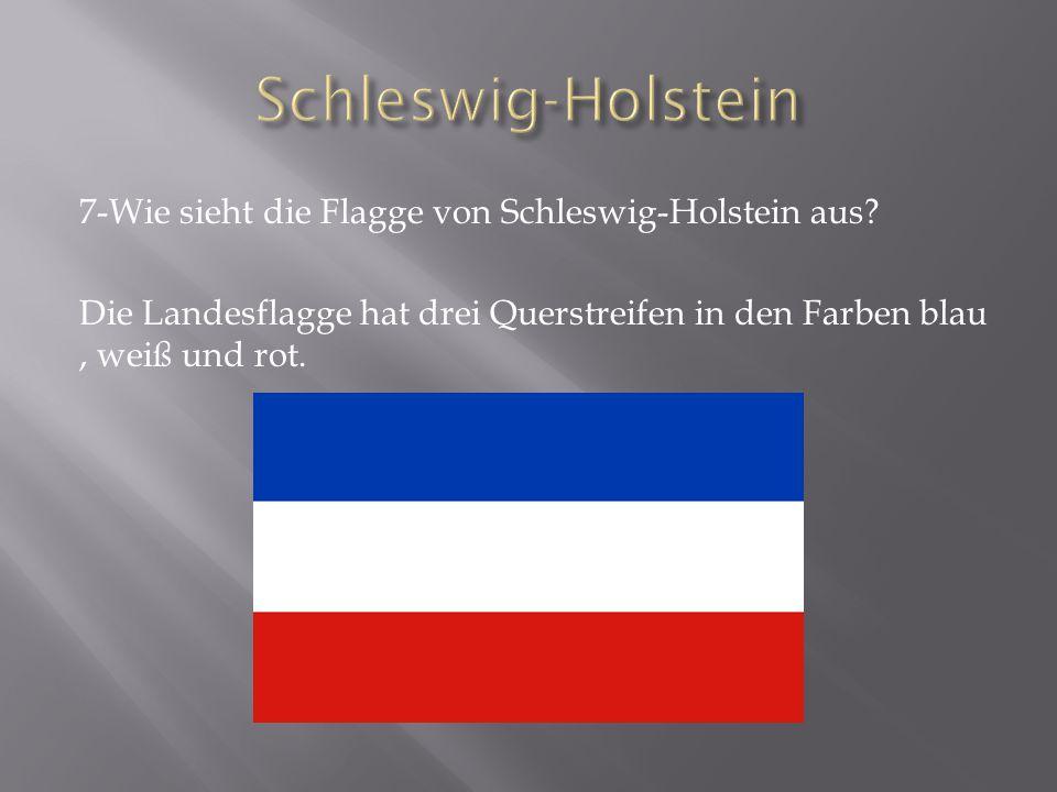 7-Wie sieht die Flagge von Schleswig-Holstein aus.