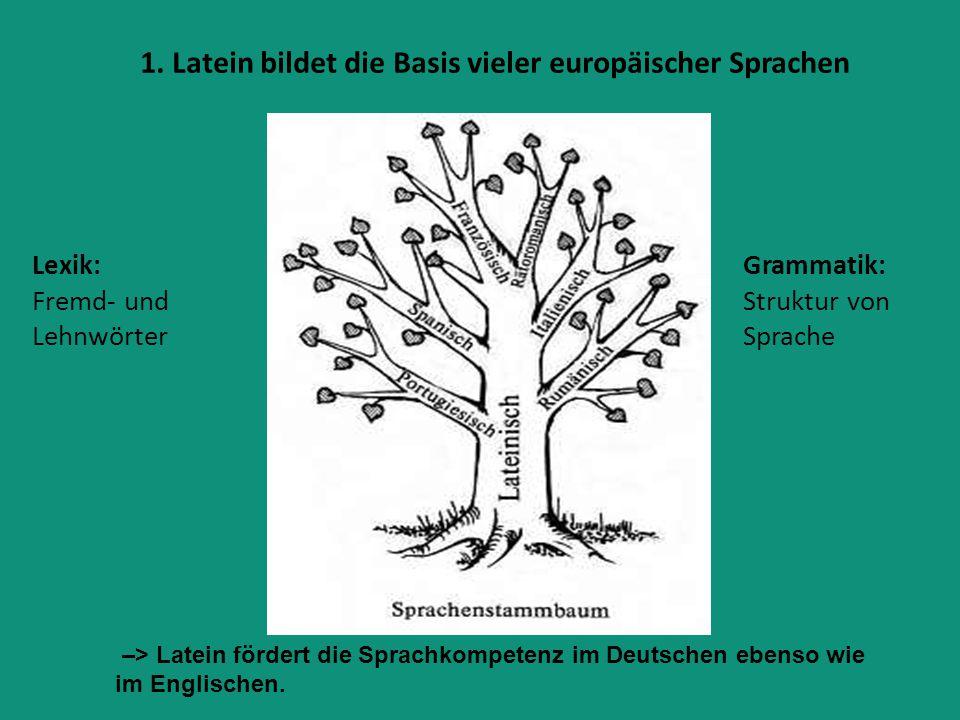 1. Latein bildet die Basis vieler europäischer Sprachen Lexik: Fremd- und Lehnwörter Grammatik: Struktur von Sprache –> Latein fördert die Sprachkompe