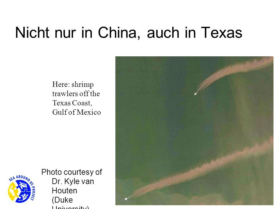 Nicht nur in China, auch in Texas Photo courtesy of Dr.