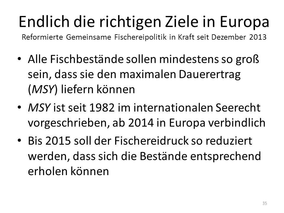 Endlich die richtigen Ziele in Europa Reformierte Gemeinsame Fischereipolitik in Kraft seit Dezember 2013 Alle Fischbestände sollen mindestens so groß