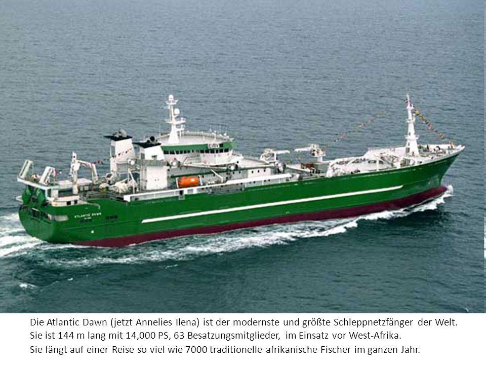 Die Atlantic Dawn (jetzt Annelies Ilena) ist der modernste und größte Schleppnetzfänger der Welt. Sie ist 144 m lang mit 14,000 PS, 63 Besatzungsmitgl