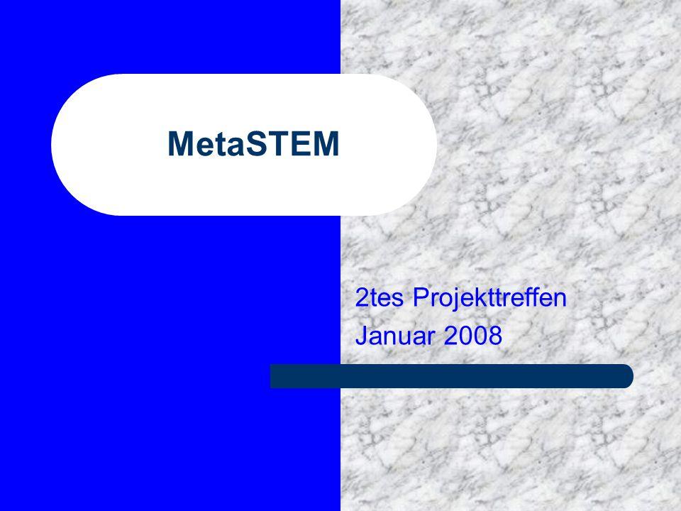 MetaSTEM 2tes Projekttreffen Januar 2008