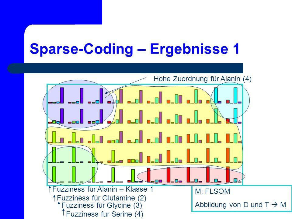 Sparse-Coding – Ergebnisse 1 Fuzziness für Alanin – Klasse 1 Fuzziness für Glutamine (2) Fuzziness für Glycine (3) Fuzziness für Serine (4) Hohe Zuord