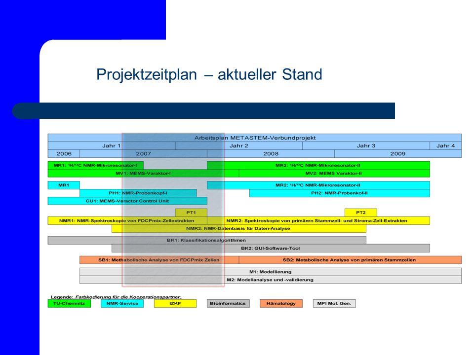 Projektzeitplan – aktueller Stand