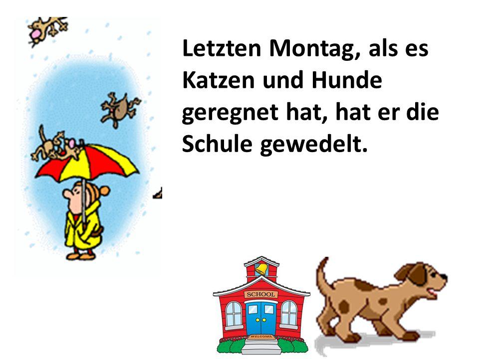 Letzten Montag, als es Katzen und Hunde geregnet hat, hat er die Schule gewedelt.