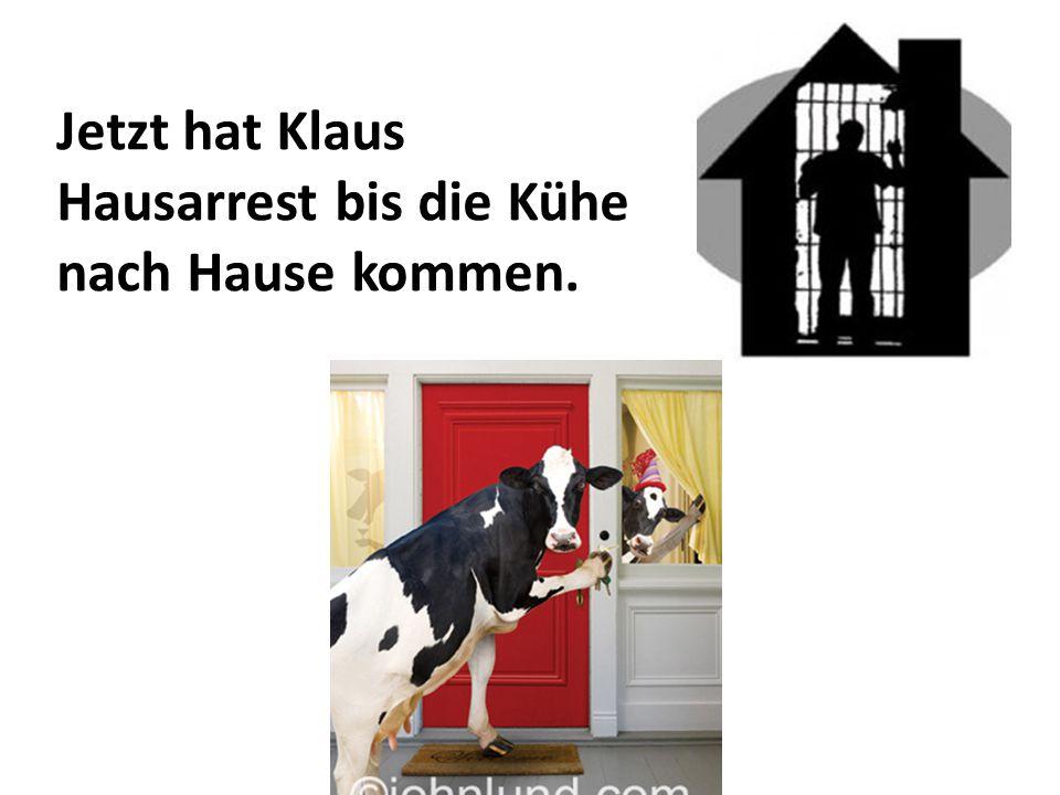 Jetzt hat Klaus Hausarrest bis die Kühe nach Hause kommen.
