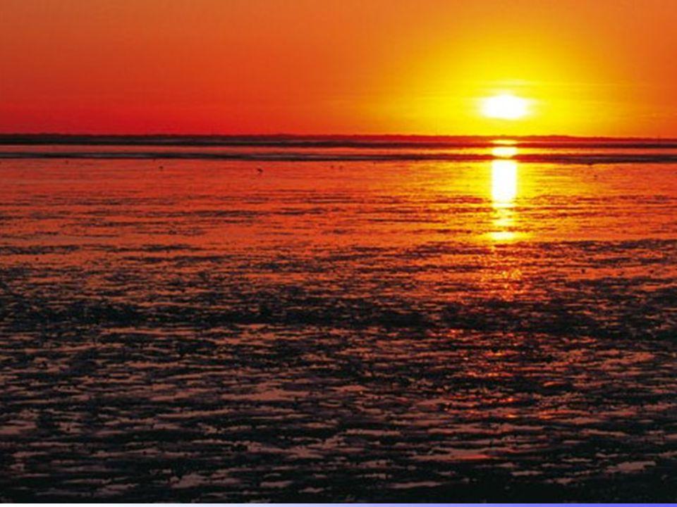 Wattenmeer Sonnenuntergang über dem Wattenmeer.