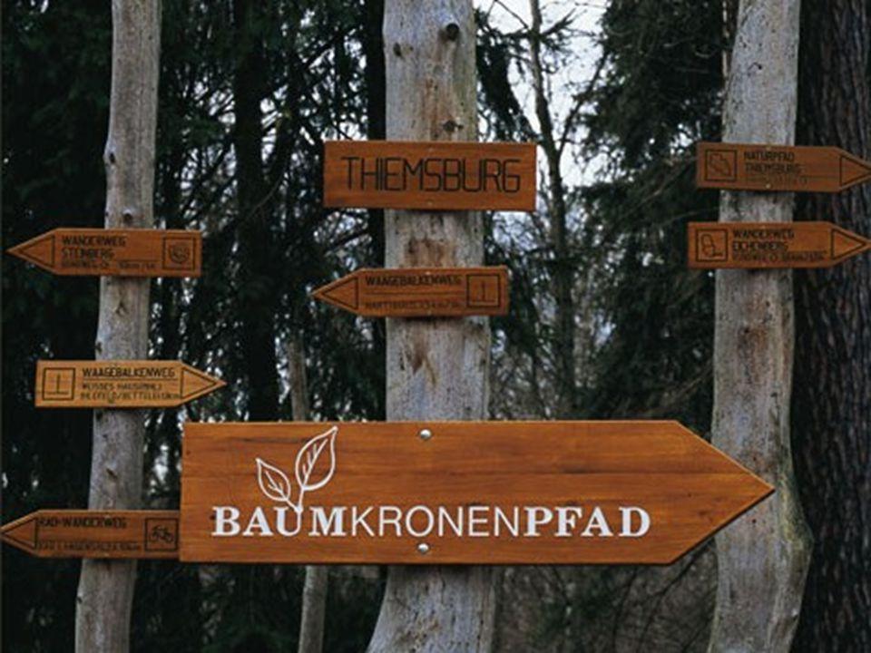 Hainich Zahlreiche Wanderwege durchziehen den Buchenwald des Thüringer Naturparks.