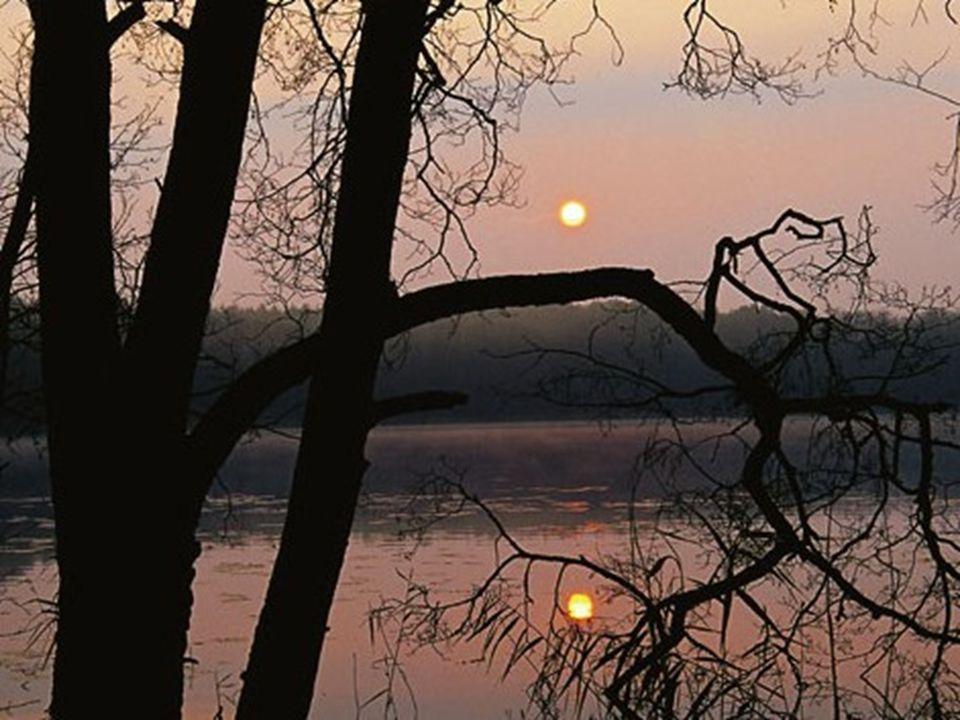 Müritz Der vom Wald eingerahmte Mühlensee gilt neben dem Born- und dem Trinnensee als einer der drei historischen Quellseen der Havel.