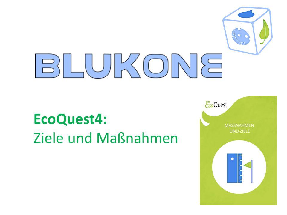 EcoQuest4: Ziele und Maßnahmen
