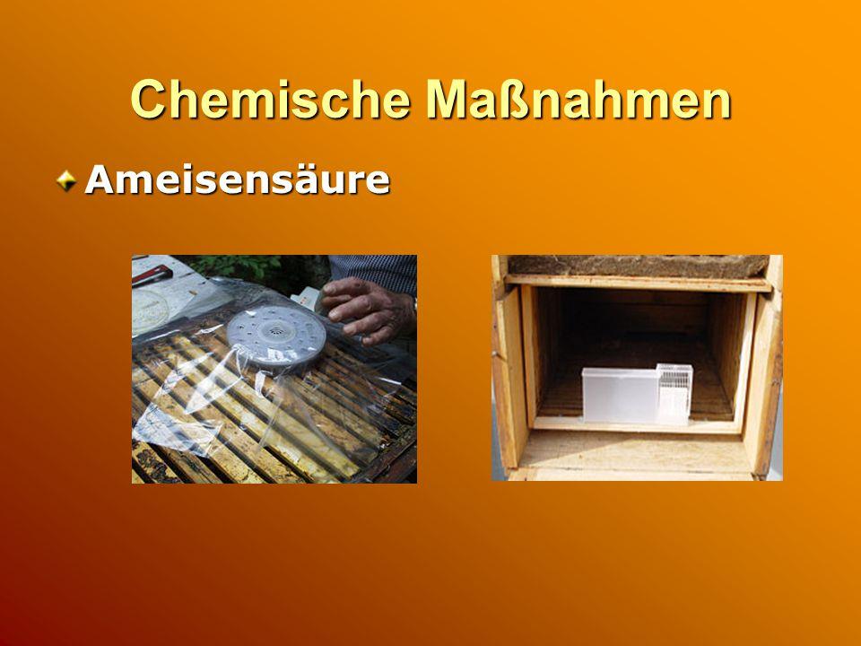 Chemische Maßnahmen Ameisensäure