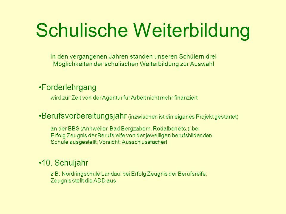 Schulische Weiterbildung z.B. Nordringschule Landau; bei Erfolg Zeugnis der Berufsreife, Zeugnis stellt die ADD aus Förderlehrgang Berufsvorbereitungs