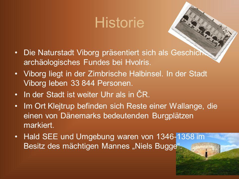 Historie Die Naturstadt Viborg präsentiert sich als Geschichte archäologisches Fundes bei Hvolris.