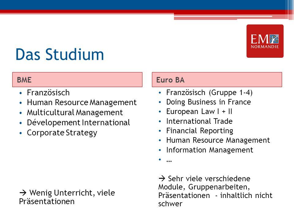 Das Studium BMEEuro BA Französisch Human Resource Management Multicultural Management Dévelopement International Corporate Strategy  Wenig Unterricht
