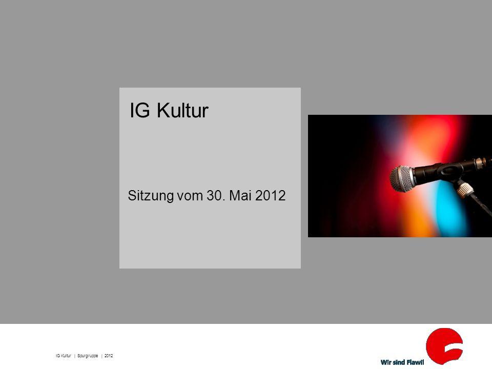 IG Kultur Sitzung vom 30. Mai 2012 IG Kultur | Spurgruppe | 2012