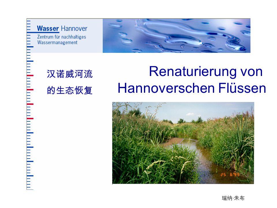 瑞纳 · 朱布 Renaturierung von Hannoverschen Flüssen 汉诺威河流 的生态恢复