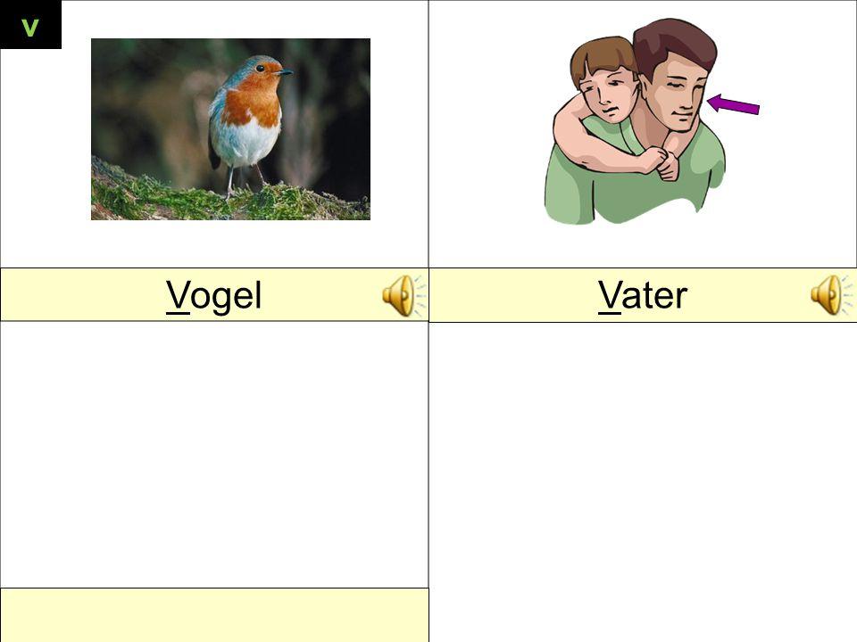 VogelVater v