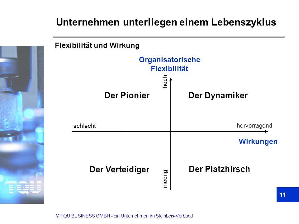 © TQU BUSINESS GMBH - ein Unternehmen im Steinbeis-Verbund Der Platzhirsch Der Verteidiger Der PionierDer Dynamiker Organisatorische Flexibilität hoch
