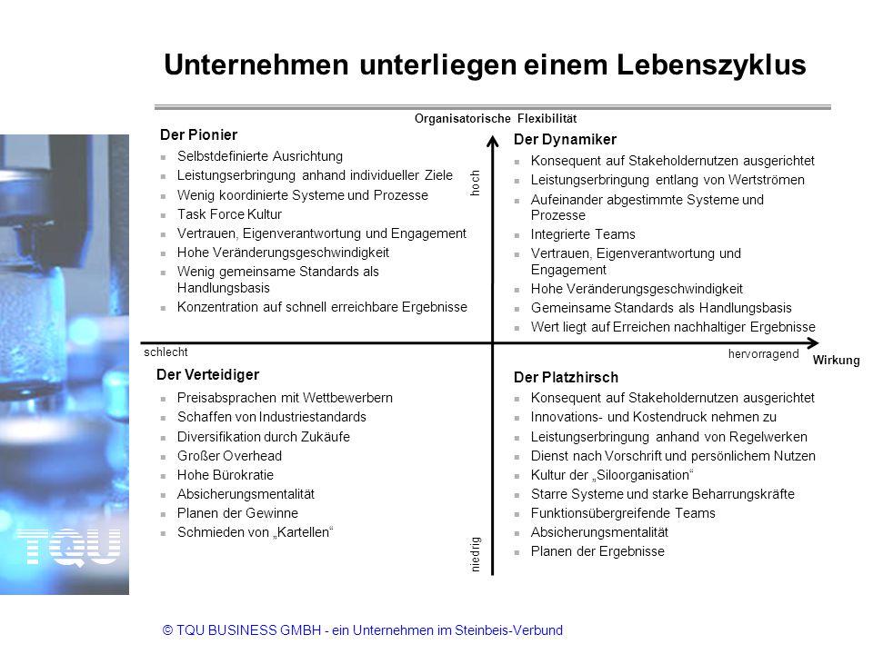 © TQU BUSINESS GMBH - ein Unternehmen im Steinbeis-Verbund Unternehmen unterliegen einem Lebenszyklus 12 n Konsequent auf Stakeholdernutzen ausgericht
