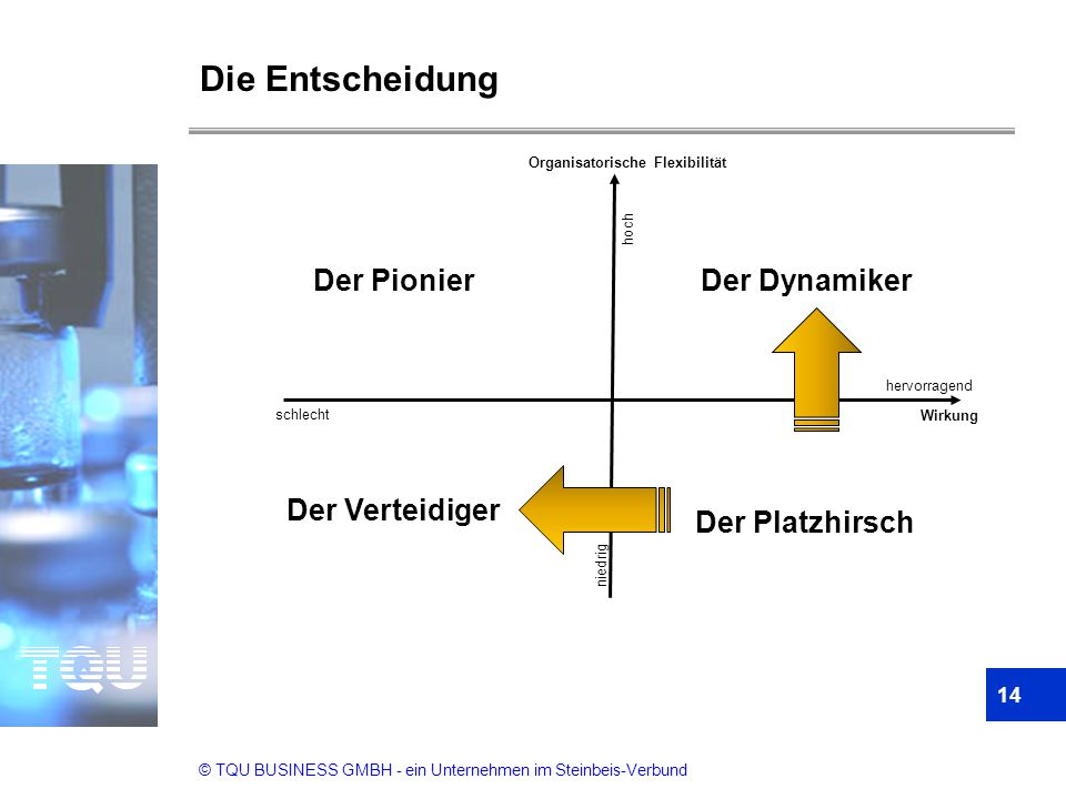 © TQU BUSINESS GMBH - ein Unternehmen im Steinbeis-Verbund Die Entscheidung Der Verteidiger Der Platzhirsch Der PionierDer Dynamiker Organisatorische