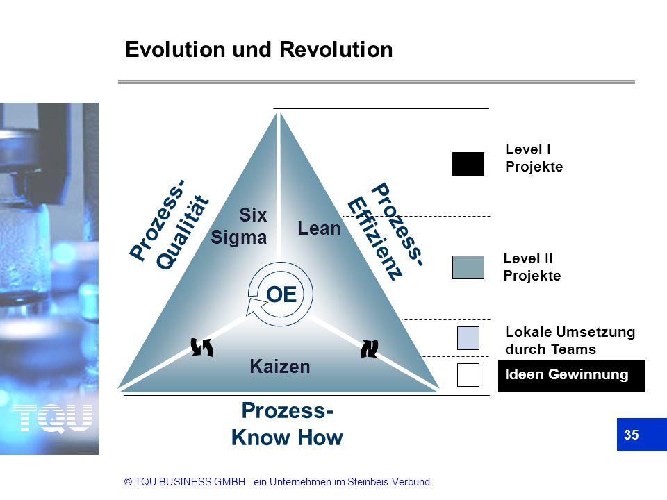 © TQU BUSINESS GMBH - ein Unternehmen im Steinbeis-Verbund Prozess- Qualität Prozess- Effizienz Prozess- Know How Six Sigma Lean Kaizen OE Evolution u