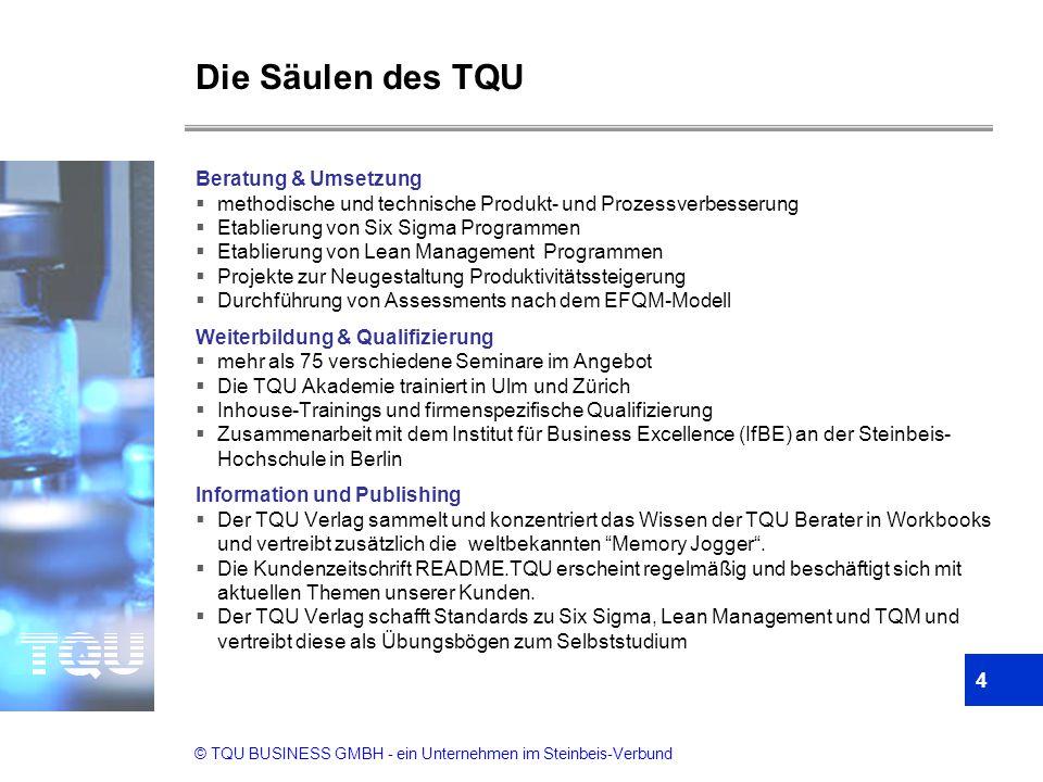 © TQU BUSINESS GMBH - ein Unternehmen im Steinbeis-Verbund 4 Die Säulen des TQU Beratung & Umsetzung  methodische und technische Produkt- und Prozess