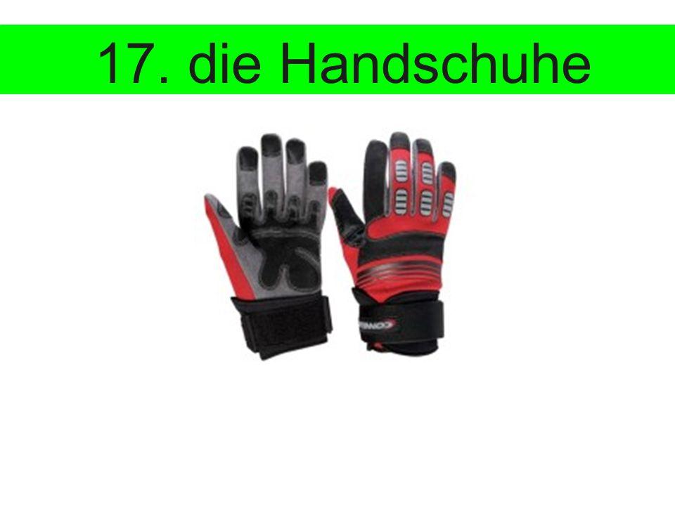 17. die Handschuhe