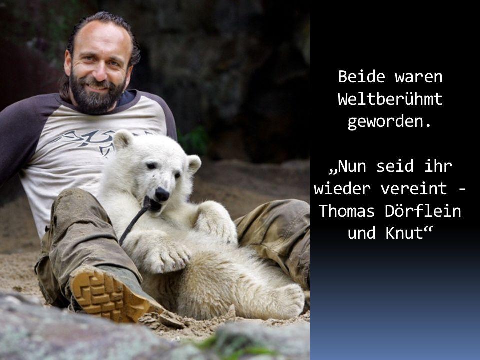 Wir alle hatten den kleinen Knut ins Herz geschlossen. Er war der Star des Berliner Zoos