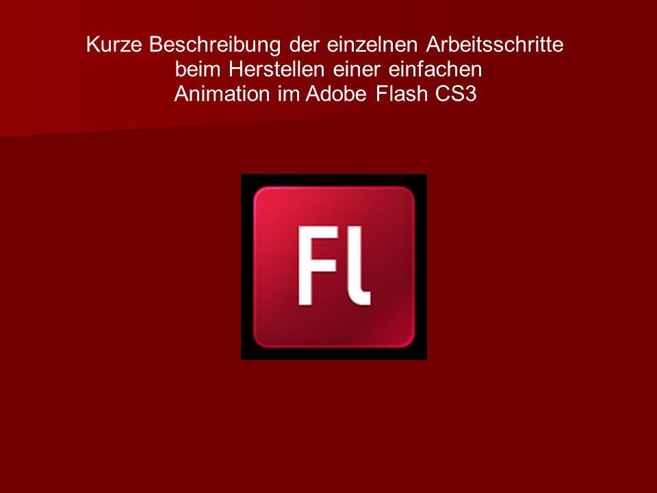 Kurze Beschreibung der einzelnen Arbeitsschritte beim Herstellen einer einfachen Animation im Adobe Flash CS3