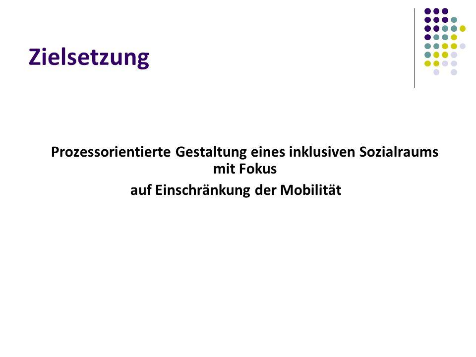 Zielsetzung Prozessorientierte Gestaltung eines inklusiven Sozialraums mit Fokus auf Einschränkung der Mobilität