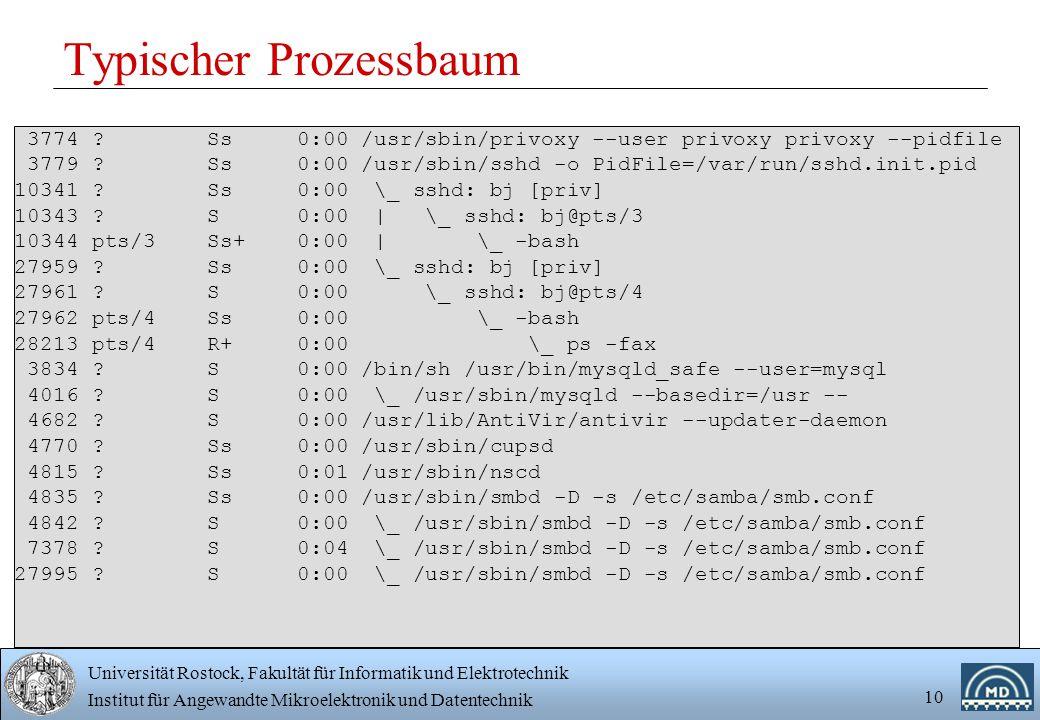 Universität Rostock, Fakultät für Informatik und Elektrotechnik Institut für Angewandte Mikroelektronik und Datentechnik 10 Typischer Prozessbaum 3774