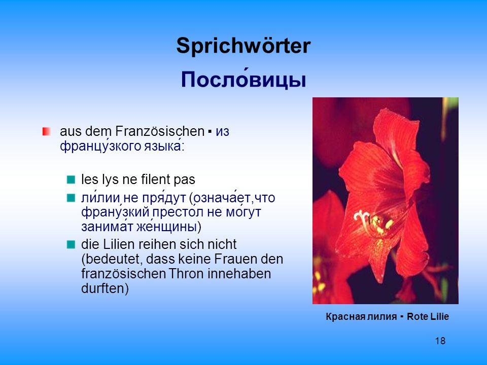19 Sprichwörter Пословицы Ирис сибирский ▪ Sibirische Schwertlilie ệtre assis sur des lys.