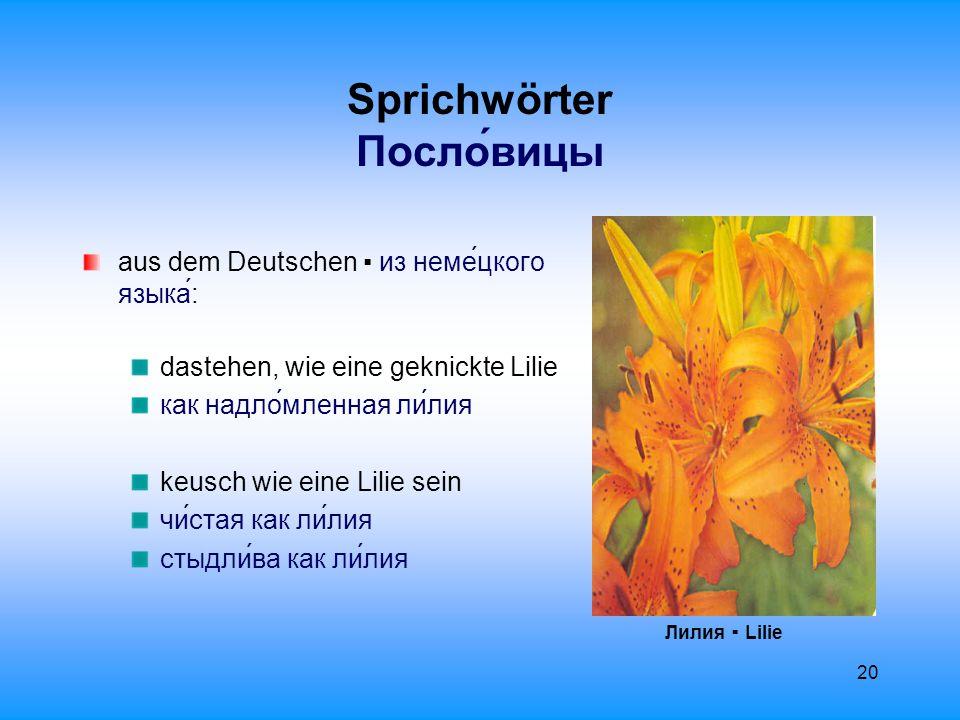 21 Gedicht Стихотворе́ние Фрагме́нты 1920 – 1921 Николай Гумилёв Я ча́сто ду́маю о ста́рости свое́й, о му́дрости и о поко́е.