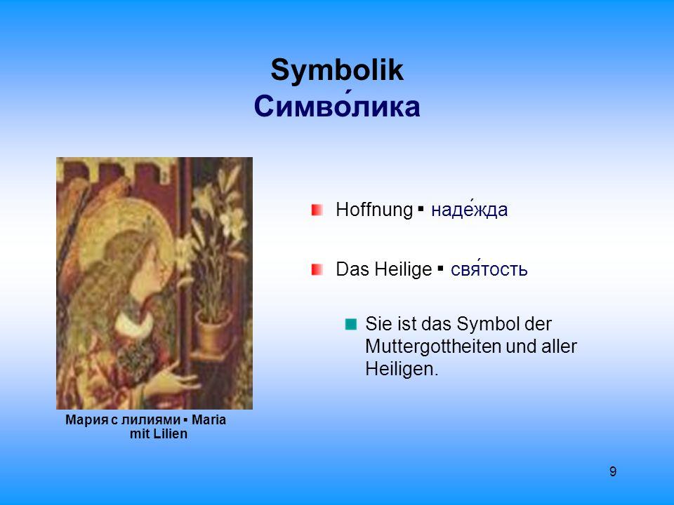 10 Symbolik Cимволика Keuschheit, Jungfräulichkeit ▪ девственность Die weiße Lilie ▪ Lilium candidum ▪ Белая лилия ist wegen ihrem reinen Farbton Symbol für Keuschheit.