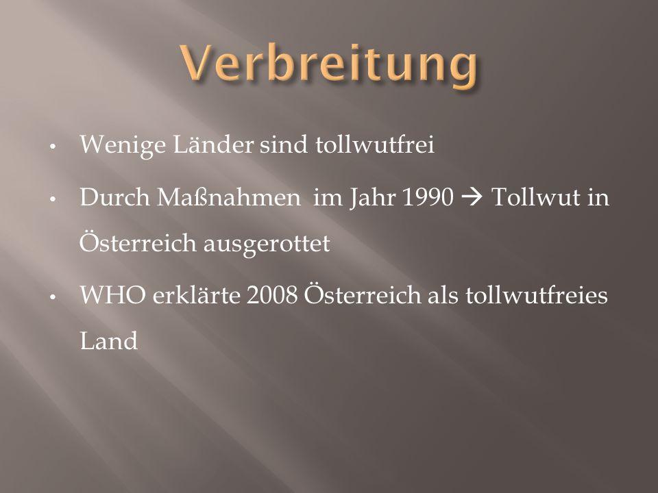 Wenige Länder sind tollwutfrei Durch Maßnahmen im Jahr 1990  Tollwut in Österreich ausgerottet WHO erklärte 2008 Österreich als tollwutfreies Land