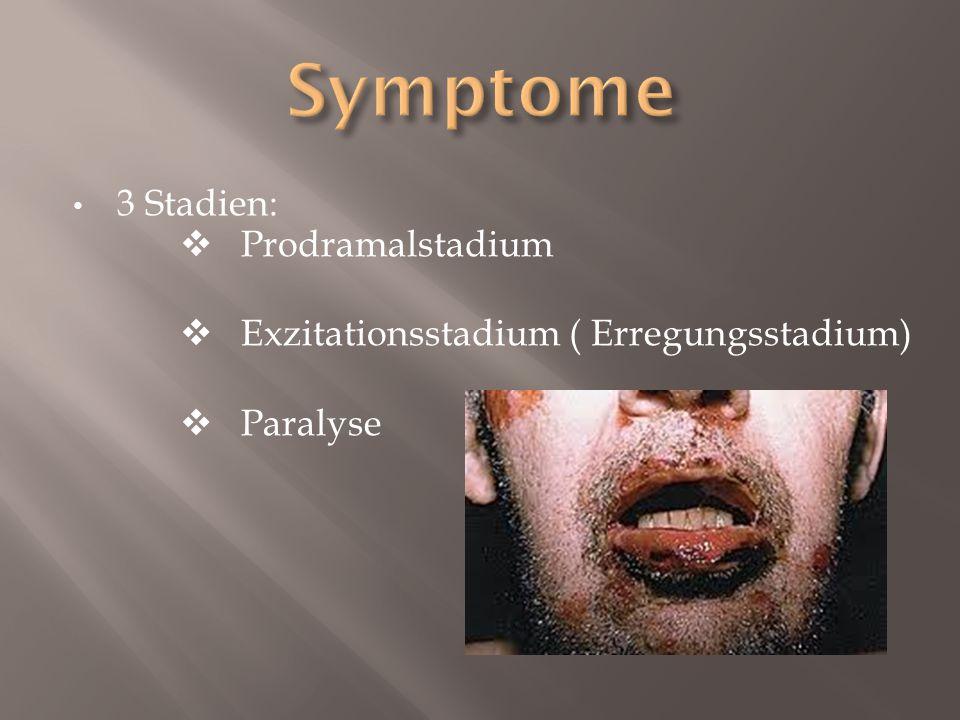 3 Stadien:  Prodramalstadium  Exzitationsstadium ( Erregungsstadium)  Paralyse